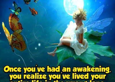 Once you've had an awakening
