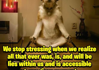 We stop stressing